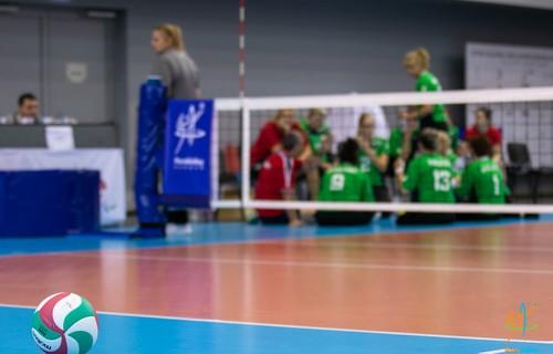 Hétvégén veszi kezdetét az ülőröplabda Európa-bajnokság
